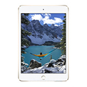 iPad mini 4 Чехлы и Аксессуары