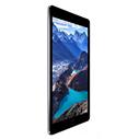 iPad Air 2 Чехлы и Аксессуары