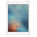 iPad Pro 9.7 Чехлы и Аксессуары